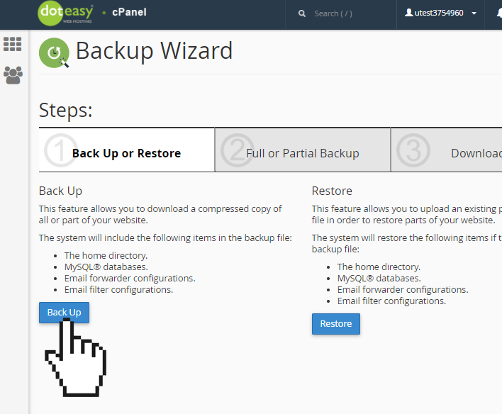 cPanel backup wizard backup