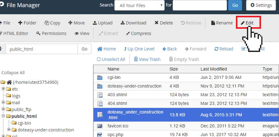 cPanel file manager edit file