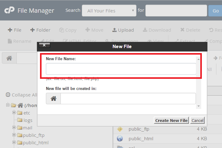 cPanel file manager new file name
