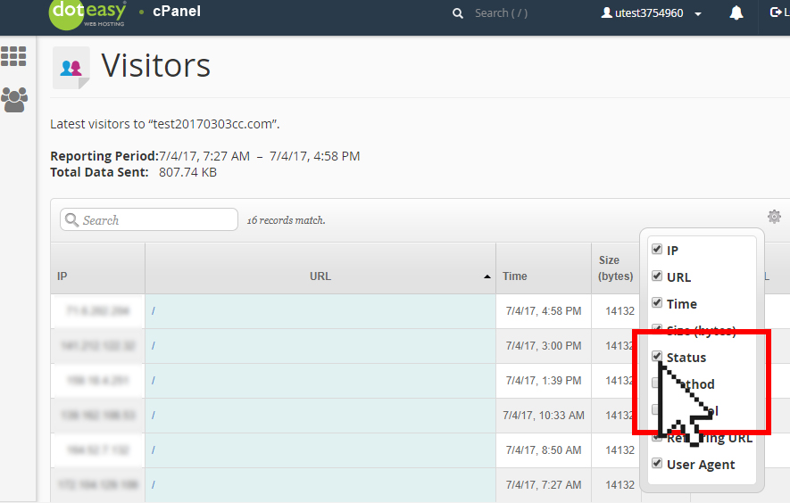 cPanel visitors log details