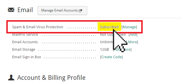 Subscribed Doteasy Email protection system