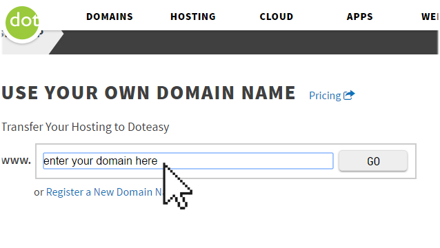 Doteasy Hosting Sign Up Enter Domain Section