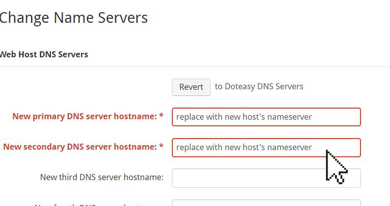 Doteasy primary DNS server hostname