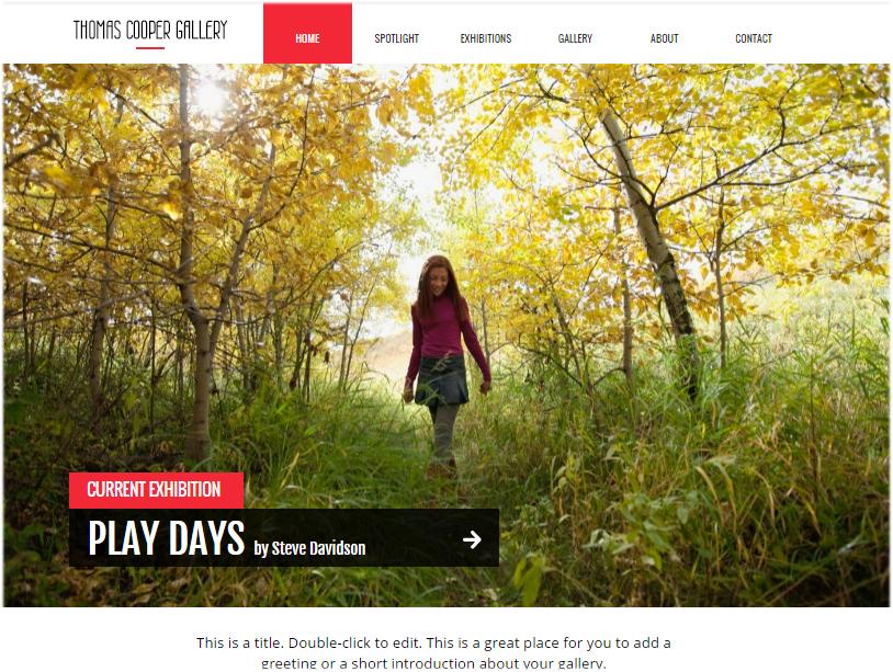 website with horizontal menu bar 3