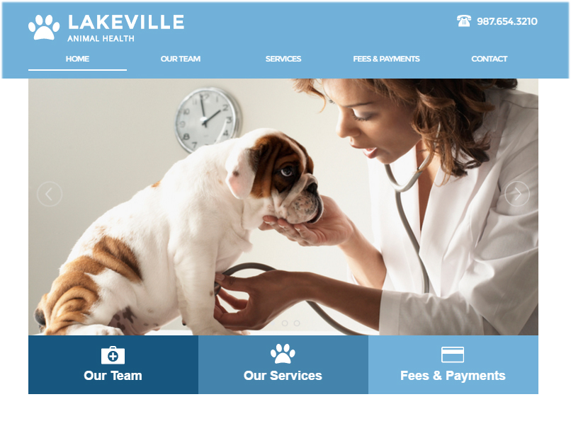 website with horizontal menu bar 5