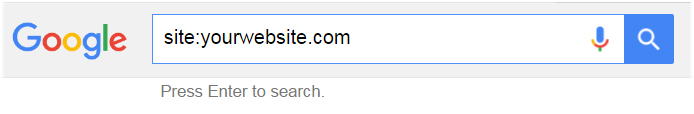 website search on google
